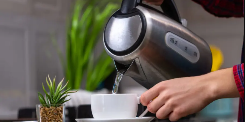 best electric kettle india
